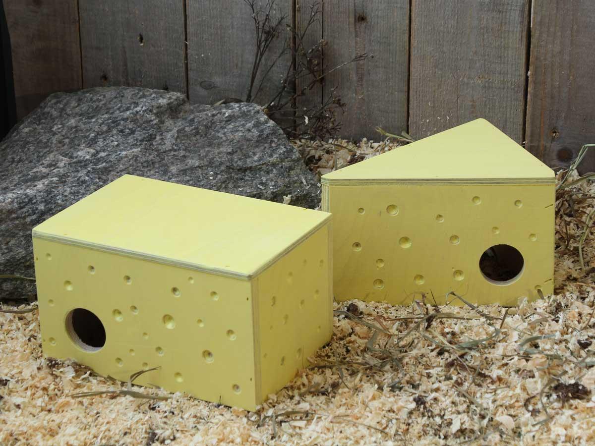 Hiiren tai gerbiilin juustomökit näyttävät aivan juustokimpaleilta.